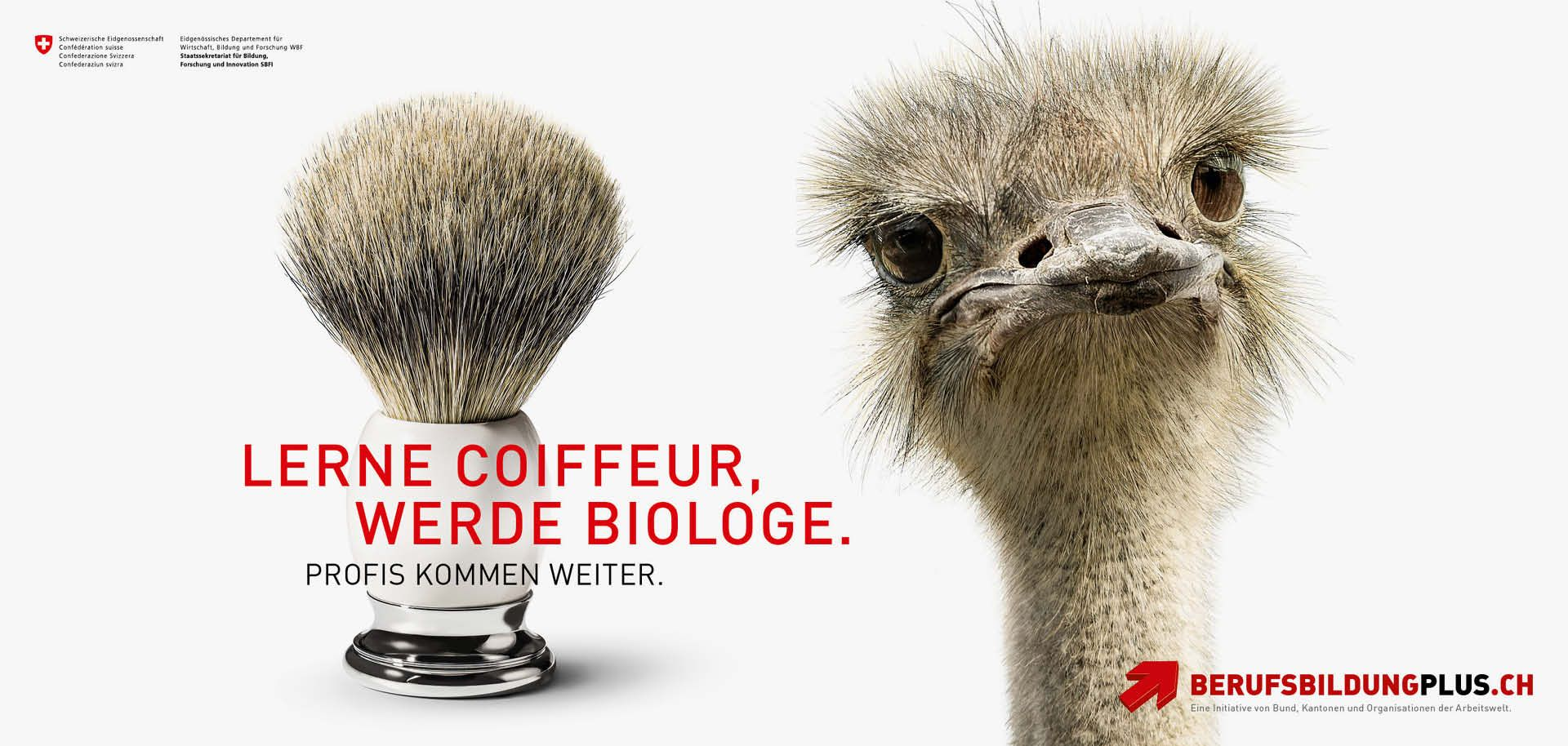 cr Basel Werbeagentur sbfi berufsbildungplus imagekampagne